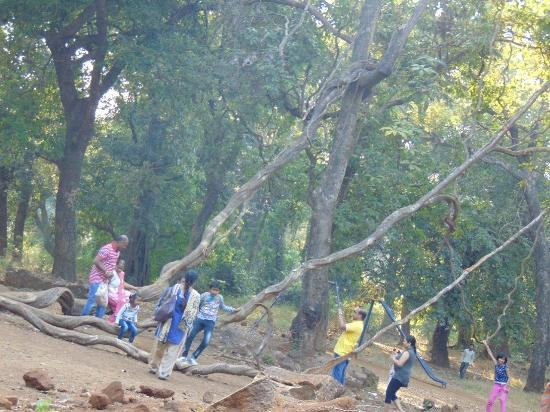 Ryewood Park Lonavala Spot for Picnic One Day
