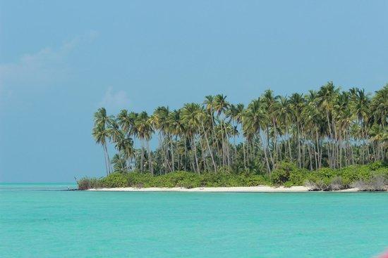 Bangaram Island Visit in Lakshadweep